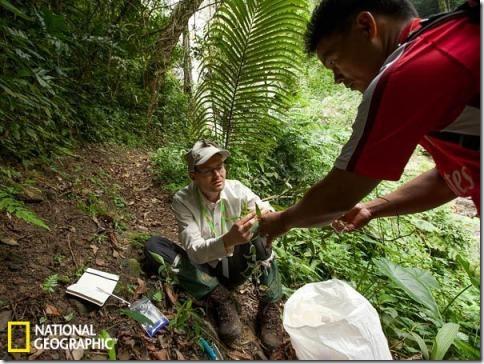 Borneo-new-vidi-09