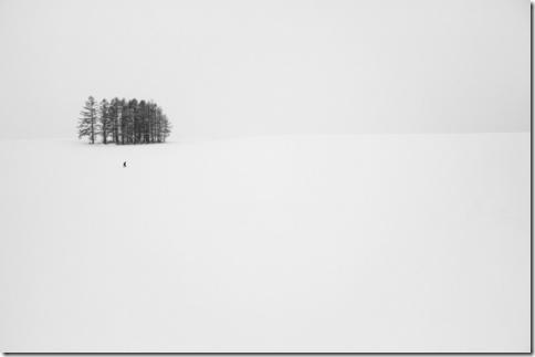 priroda-10