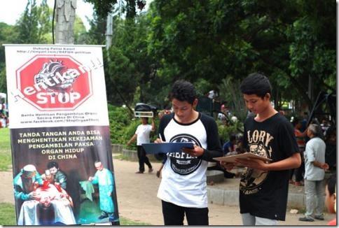 Indoneziya_Falungun-03
