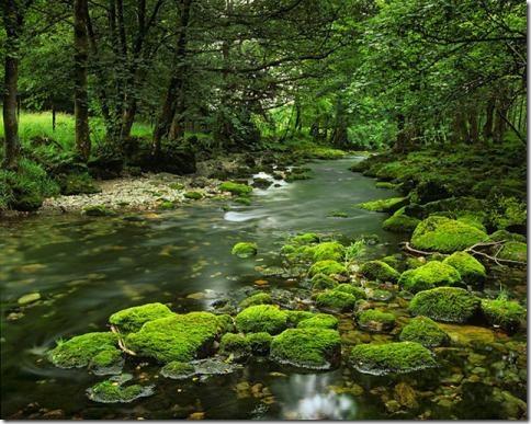 prirodnie_peizazhi-19