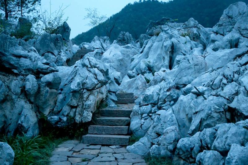 Синие сумерки в каменном лесу