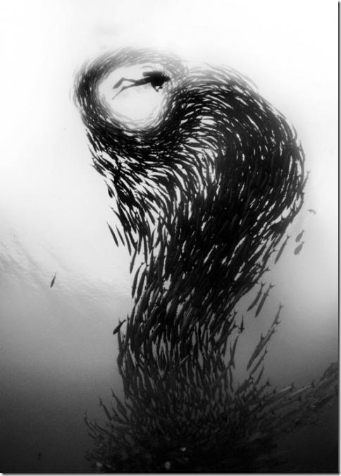 podvodnii-mir06