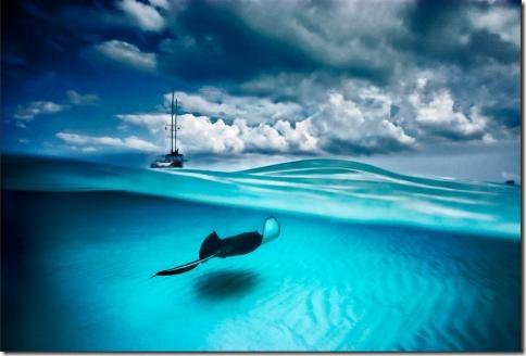 podvodnii-mir08