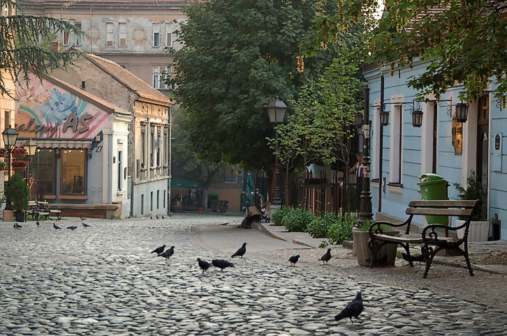 Улица Скадарлия в Белграде. Фото: wikipedia.org