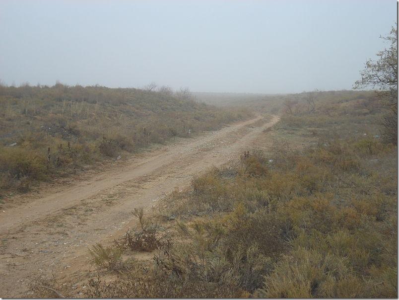 Калмыцкая степь. Фото: wikipedia.com