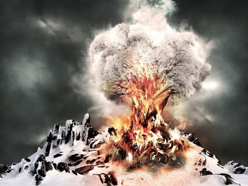 В Англии сожжено 100000, пораженных грибком деревьев. Фото:fonstola.ru