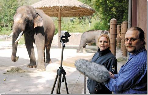 slon-govorit