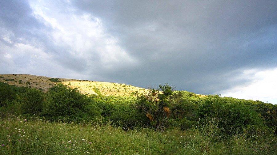 Дубровское сельское поселение урочище кизил коба