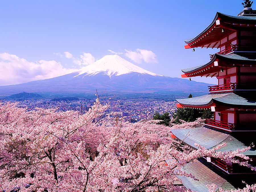весна Япония